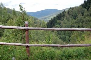 Widok na przełęcz kowarską