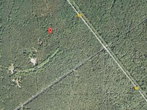 Jeleń - zdjęcie satelitarne