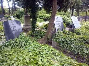 Inne groby rodziny Jannasz.