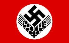 flaga RADu
