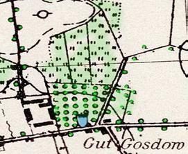 """Wycinek mapy z Gozdowem zamieszczony w publikacji ,,Majątki"""" E. H. Nejman."""