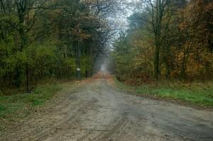 Droga zachodnia