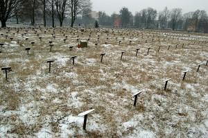 Cmentarz żydowski w Łodzi - mogiły zmarłych w gettcie